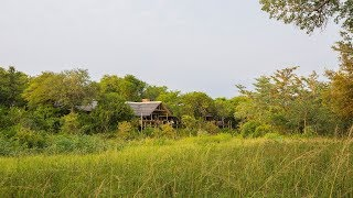 Thornybush Game Lodge, Greater Kruger National Park