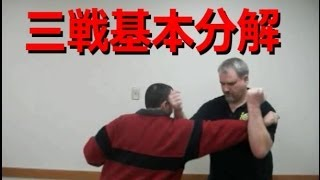 Sanchin Basic Analysis [Bunkai] (三戦基本分解)
