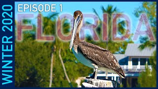 Myakka River State Park and Venice, Florida - Winter 2020 Episode 1