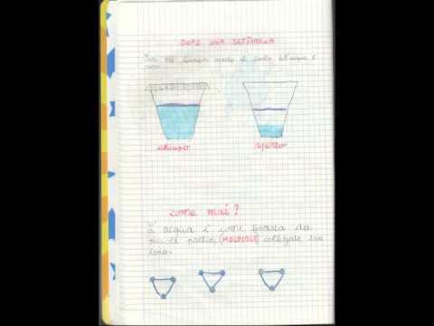 Le Canzoni Dellacqua4 Lacqua E Il Calore Evaporazione Youtube