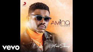 Ariel Sheney - Amina (Ghenda Remix) (Audio)