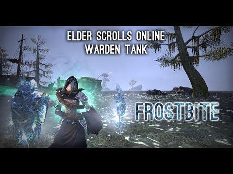"""Warden Tank Build PvE """"Frostbite"""" - Morrowind ESO"""