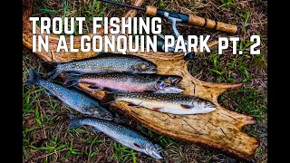 Pt. 2 Algonquin Park Spring Brook Trout Fishing with Ted Baird & Shawn James