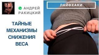 Взлом мозга [hack].  Как стимулировать и контролировать снижение веса?