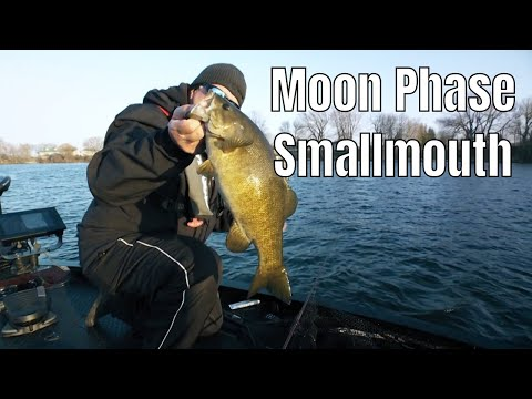 Moon Phase Smallmouth | Episode 460 | Fish'n Canada