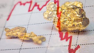 Dutch Central Bank 🇳🇱 Says Gold Is The Backup Or Could Crypto Be?