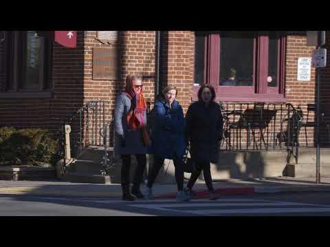 Leading Pedestrian Intervals Countermeasure
