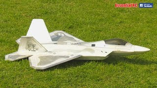 F-22 RAPTOR radio controlled (RC) EDF JET - Low, Fast and Stealthy !