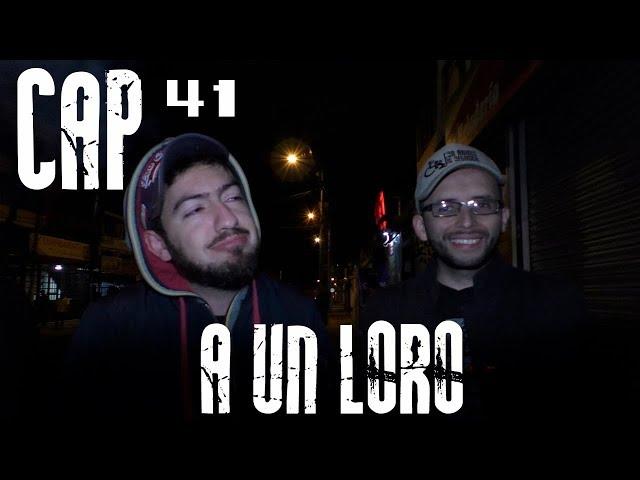 Con Ánimo de Ofender : Cap #41 -  A Un Loro