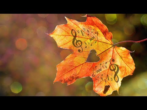 Relaxing Romantic Piano Music ● A State Of Art ● Soothing Music for Studying, Stress Relief Piano