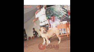 Woli Agba Runs Away As Dele Brought Aja Winning On Stage As Gbenya Adeyinka Storms Woli Agba's Show