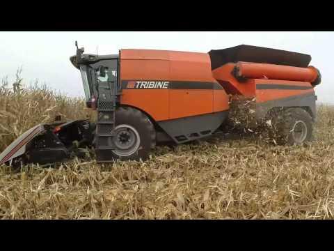 Tribine Corn Harvest 2013