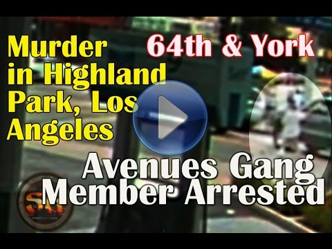 Avenues gang member shoots & kills innocent bystander after driver mad dogs him in Highland Park