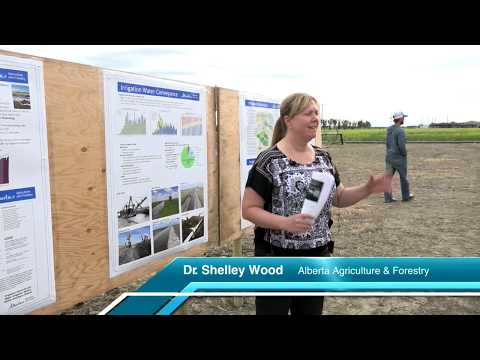 The History and Future of Irrigation in Alberta - Farming Smarter