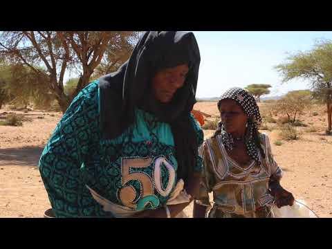 Algeria South Sahara Tuareg woman / Algérie Sahara du Sud Femme touareg