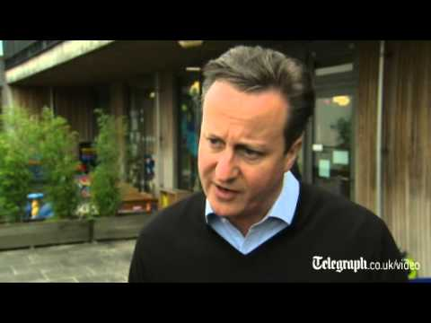 David Cameron defends Britain's 'robust approach' over Crimea