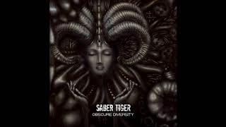 Band: Saber Tiger (from Sapporo, Hokkaido, Japan) Song: Divide to D...
