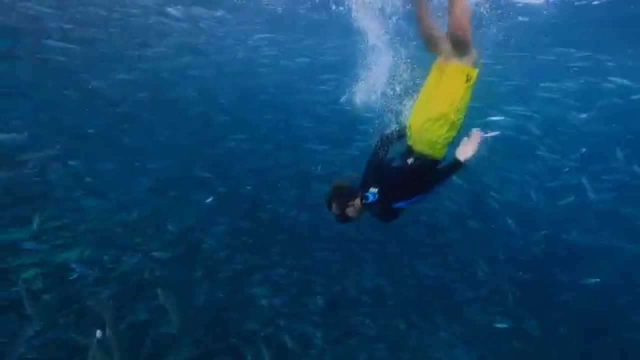 Snorkel Palm Beach County