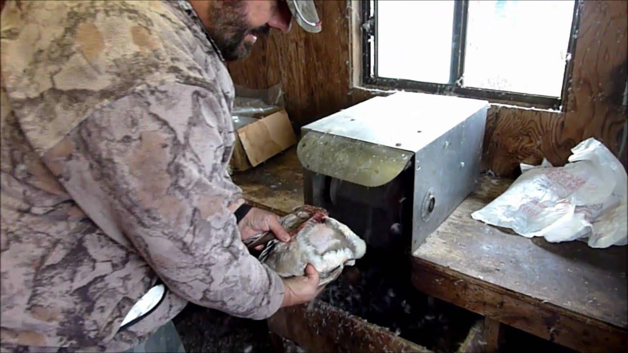 duck plucker machine