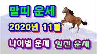 11월 말띠 운세 - 2020년 11월 경자년 정해월 말띠 일진 사주 운세보기