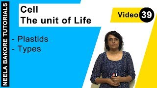 Cell - The Unit of Life - Plastids - Types