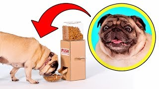 Simple and Convenient: DIY Dog Food Dispenser