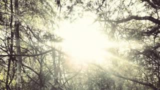 All I Want Cover (KODALINE) - Niamh Wilson