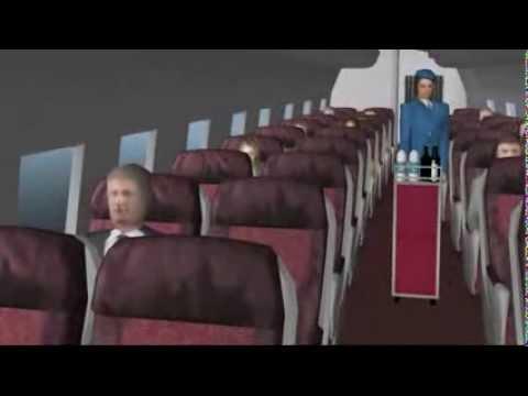 Sindellyse Flight part 2, The Breguet