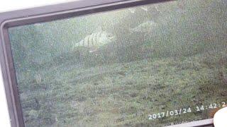 Реальный тест подводной камеры на глубине 9 10 м в экстремальных условиях