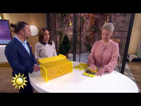 Se Tildes överraskning till dagens trisskrapare - Nyhetsmorgon (TV4)