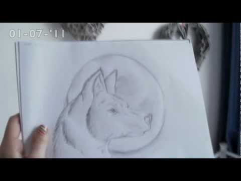 Wolf Drawings Wolf Tekeningen Made By Me Youtube