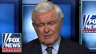 Newt Gingrich on Democrats' dangerous new tactics