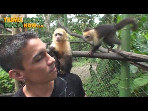 Animal Rescue Center La Fortuna Costa Rica