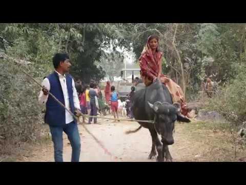 रमखेलना क भैस उठल//maithili Comedy//