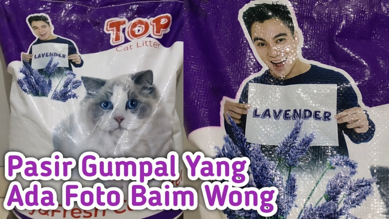 Review Pasir Gumpal Top Cat Litter Full Hd Youtube