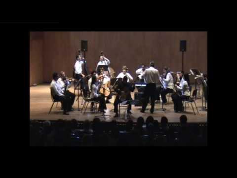 Javier Mauricio Cruz plays Luis Antonio Escobar Concierto para guitarra y orquesta de cuerdas