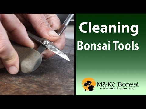 86) Bonsai Tools for Beginners Basic Bonsai Tools Care and Cleaning