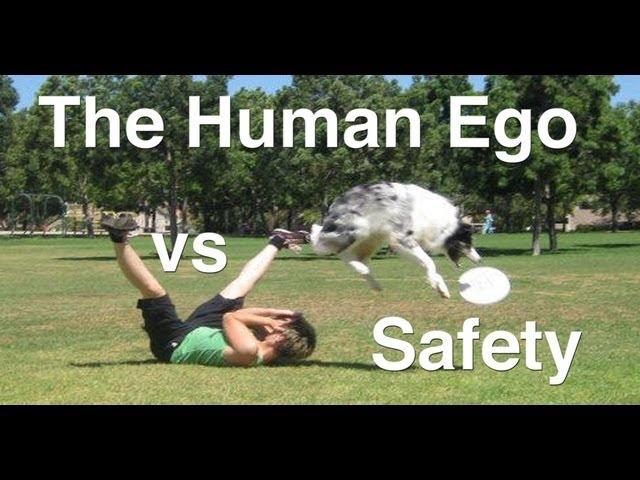 The Human Ego vs Safety- Dog Tricks Training