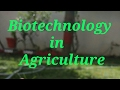 Biotechnology in Agriculture- Importance & Scope