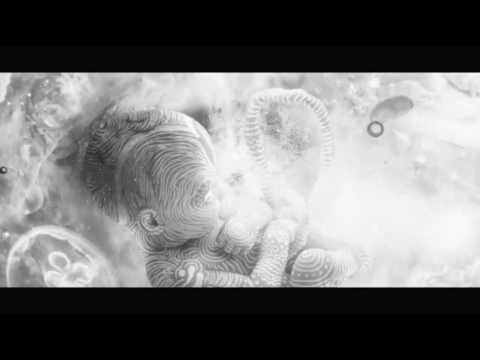 Alan Watts: The Dream of Life [Altyazılı]