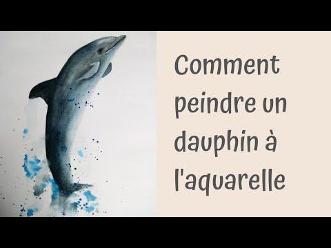 Peindre Un Dauphin A L Aquarelle Video Peinture Aquarelle Facile