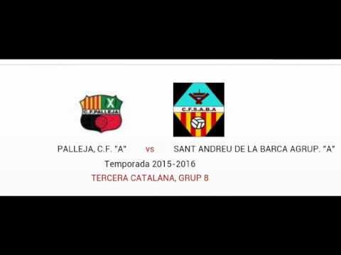 FC Palleja  0  //  SantAndreu de la Barca  2