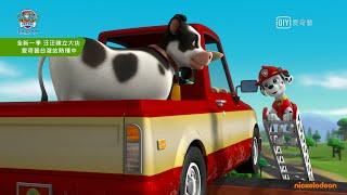 《汪汪隊立大功》汪汪隊出動救援! 合力拯救吊橋上的小牛