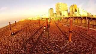 Quadcopter Brighton Beach