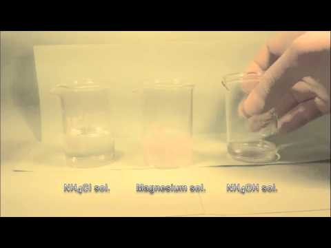 Reaction Of Magnesium Solution With Ammonium Hydroxide Solution