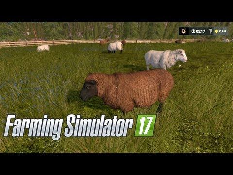 Farming Simulator 17--Private World #4!--MOST EFFICIENT OPERATION!