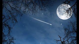 Загадывай желание ! Ночью 13 августа жители планеты смогут увидеть звездопад.