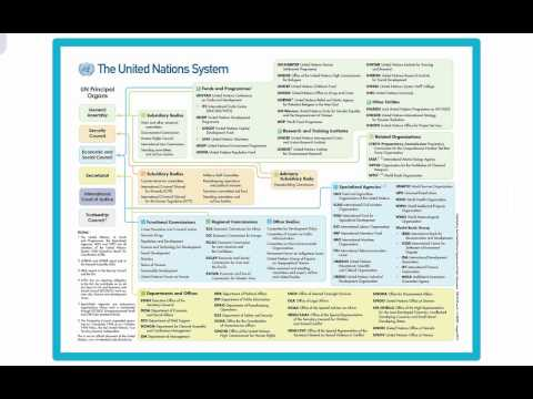 POS 273 Lecture 8: International Organizations & Law