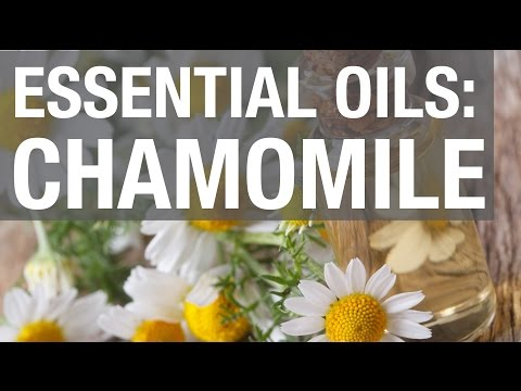 essential-oils:-chamomile