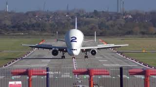 Airbus Beluga Crosswind Landing and Takeoff 4K Video She looks like Megamind